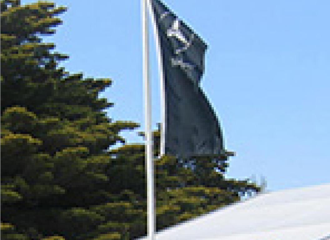miscellaneous flag poles